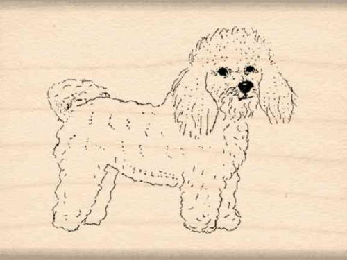 Bichons Frises Rubber Stamp