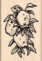 Apples Rubber Stamp